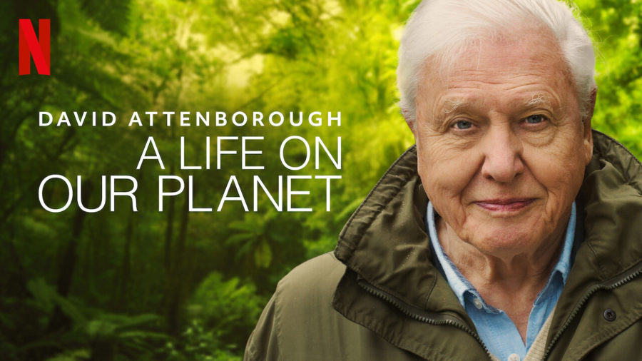 %233%29+David+Attenborough%3A+A+Life+on+Our+Planet